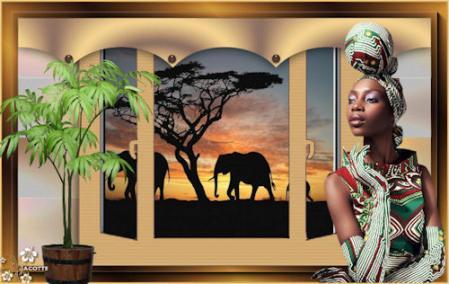 safari1-1.jpg